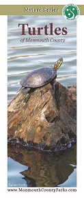 Turtles of Monmouth County brochure