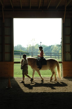 Photo of a horse at Sunnyside Equestrain Center