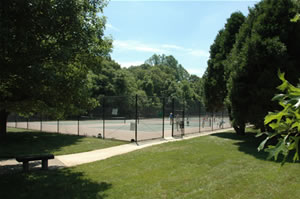 Photo of tennis courts at Thomspon Park
