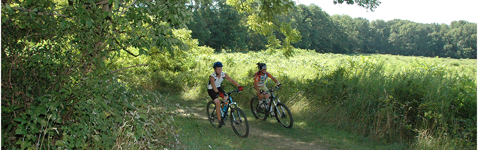 Sign Up for the Woods Hollow Classic Mountain Bike Race
