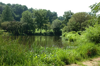 a lake at holmdel park